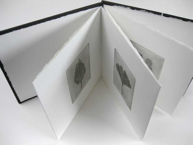 Artists-Books-image-web-site-18