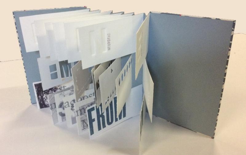 Jane Sasenow - Flag book
